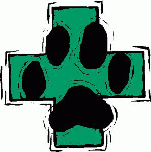 veterinarian-clipart-298x300_verde