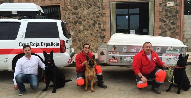 Equipo canino de rescate de Cruz Roja, cuidado por Gavetex Veterinaria